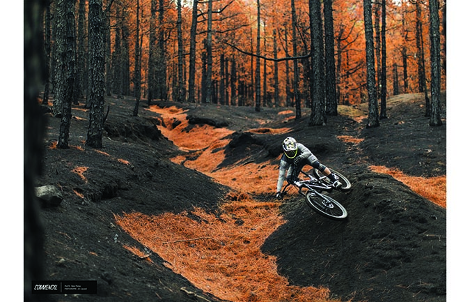 FOTO ALTA CALIDAD : REMI THIRION - BURNT PALMA FOREST